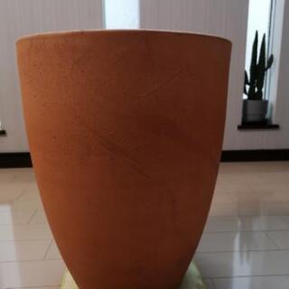 テラコッタ 素焼き鉢