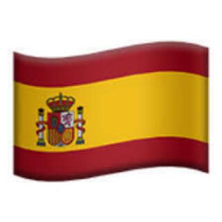 オンライン・スペイン語