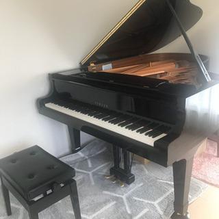 オンラインor動画添削によるピアノ・ソルフェージュ教室♪