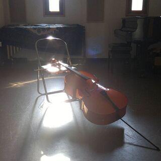 市が尾チェロ バイオリン ビオラ教室