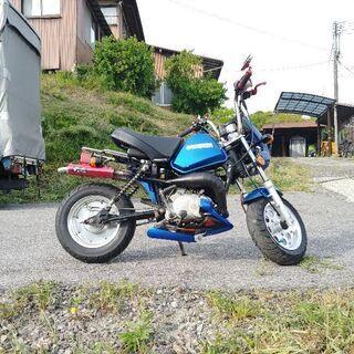 旧車ヤマハポッケ カスタム79cc黄色ナンバー希少車