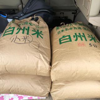 令和元年のお米です