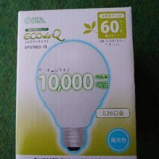 電球形蛍光ランプ