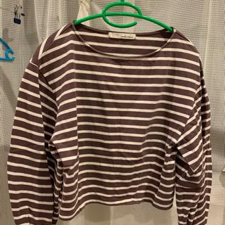 ストライプTシャツ