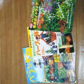 ベランダ畑 ハーブと鉢花