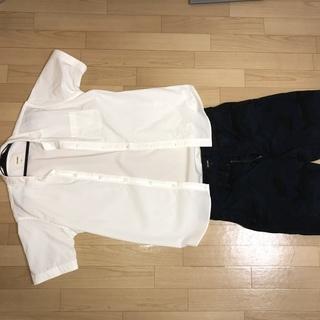 ビームス シャツ 短パン Lサイズ 夏服