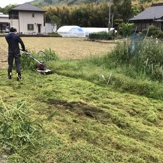 伸びきった草、ご近所に迷惑をかけていませんか?