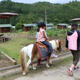 馬のお世話、牧場作り、農作業、稲作、草刈り、イベント手伝い、大工...