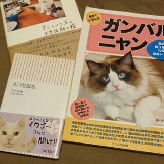 猫本3冊 ネコを撮る・まこという名の不思議顔の猫・ガンバルニャン