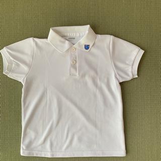 認定江南こども園グレイス 半袖ポロシャツ(体操服兼用)