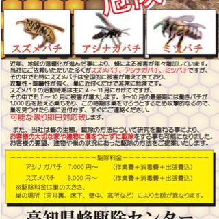 高知県蜂駆除センター