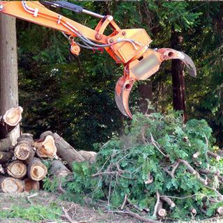 庭の大木や伐採又は抜根致します。また、草刈りも可能です。 − 栃木県