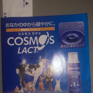 コスモスラクト 乳酸菌生成エキス2ml