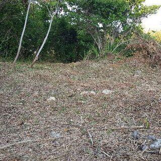 シーズン到来⏩草刈りをさせて頂きます⏩浜松~焼津