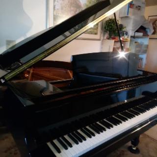 ピアノまたはピアノの弾き語りを英語または日本語で教えます。