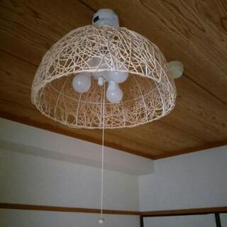 オシャレ照明 3つ LED電球付き