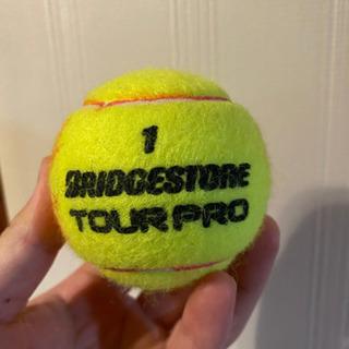 早い者勝ち!練習用 テニスボール沢山あります!の画像