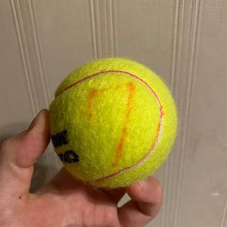 早い者勝ち!練習用 テニスボール沢山あります! - 家電