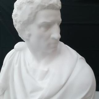 石膏像 ブルータス 胸像 デッサン