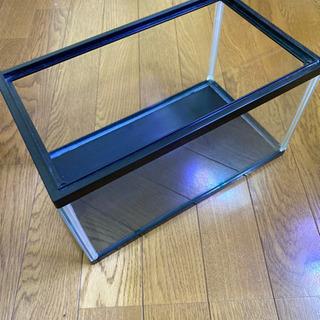 30cm ガラス水槽