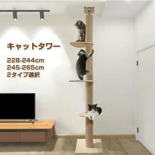 キャットタワー 突っ張り 木登りタワー シングル 猫タワー 高さ...
