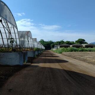 自然に囲まれた環境で牛ふん堆肥づくり 未経験歓迎、保険あり