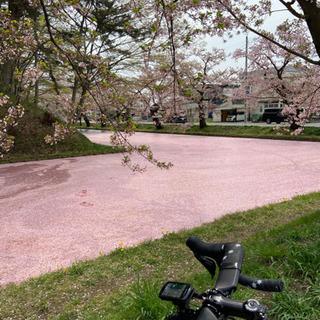 一緒に走りませんか? 青森市在住の方募集 ロードバイク