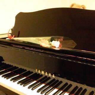 ピアノ&エレクトーン&リトミック オンラインレッスンも賜ります