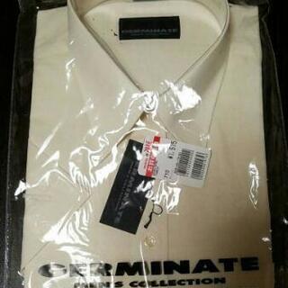 携帯安定シャツ えり回り41-半袖 薄いレモンcolor