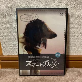 遠藤和博の犬のしつけ教室DVD3本セット