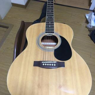 HONEY BEE アコースティックギター F-15 初心者入門...
