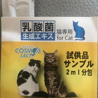 乳酸菌生成エキス 2ml 腸内環境の維持 猫専用