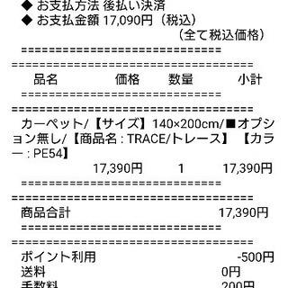 新品  カーペット/【サイズ】140×200cm 抗アレルギー、...