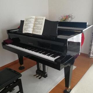 【オンラインレッスン】声楽、ピアノ、ソルフェージュ、楽典