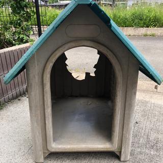 大きめの犬小屋 【ボロボロです】