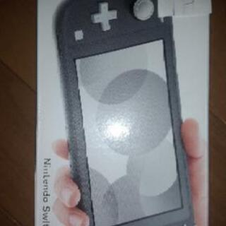 Nintendo Switchlight 任天堂スイッチライト グレー
