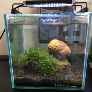 KOTOBUKI キューブ  水槽 20cm ライト エアレーシ...
