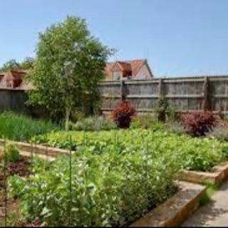 名古屋南区で家庭菜園してみませんか?