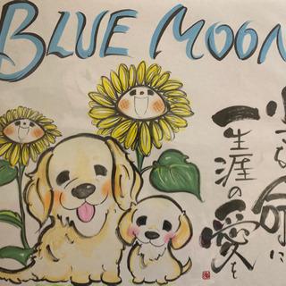 Bleu Moon ペット販売