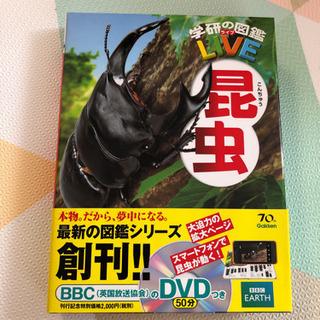 学研LIVE図鑑 昆虫