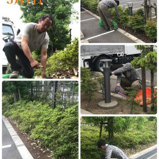 庭の手入れ 外構工事従業員募集中