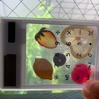 ハーバリウム電卓 フルーツ