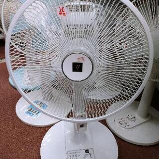 ✨扇風機入荷しました✨SHARP 扇風機