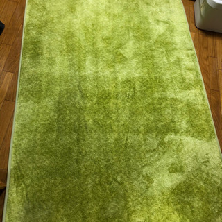 緑のカーペット ラグ マット