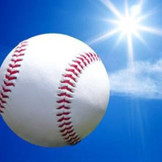 野球観戦しないかい?