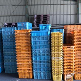 値下げ中プラスチックケース カゴ プラカゴ 農業用 収納箱 業務用