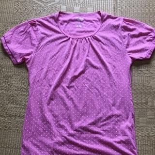 005 水玉半袖Tシャツ ピンク