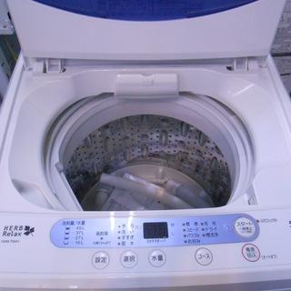 ヤマダ電機 高年式2019年 5K洗濯機
