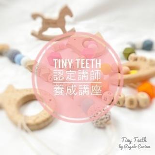 Tiny Teeth認定講師養成講座