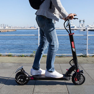 電動バイク② 激レア 2ヶ月予約待ち公道走行可能